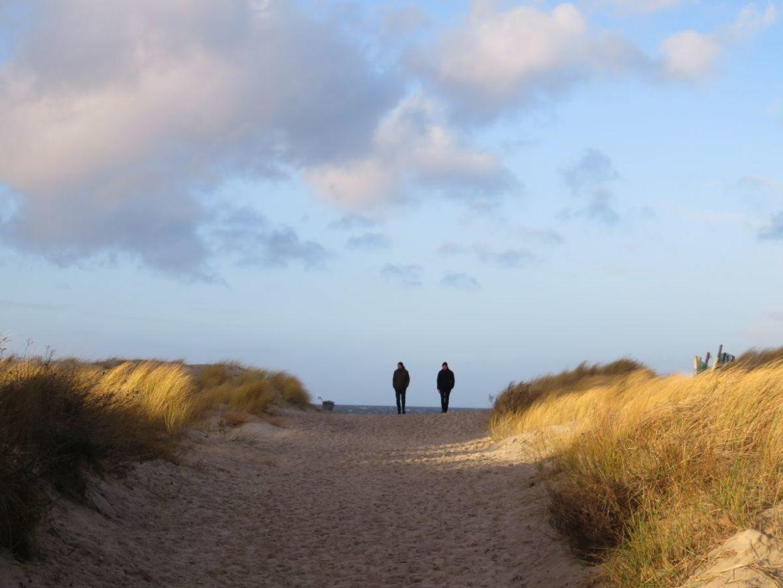 Dünen Warnemünde Ostseestrand